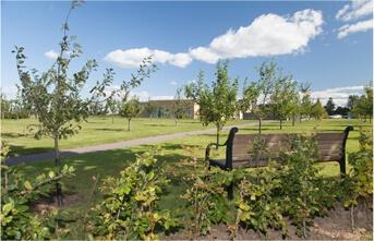 Hospice, grøn have